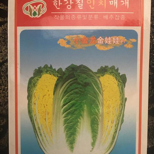 郑州惠济区 小金龙娃娃菜种子
