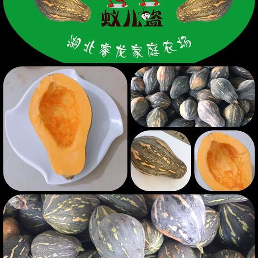 宜城市 湖北睿龍農場,2020年5000畝香芋南瓜,誠邀各地客商合作