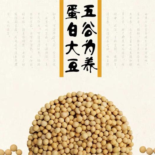 宝清县 籼逗逗富硒五谷 蛋白大豆 大豆浆专用大豆 真空袋装850k