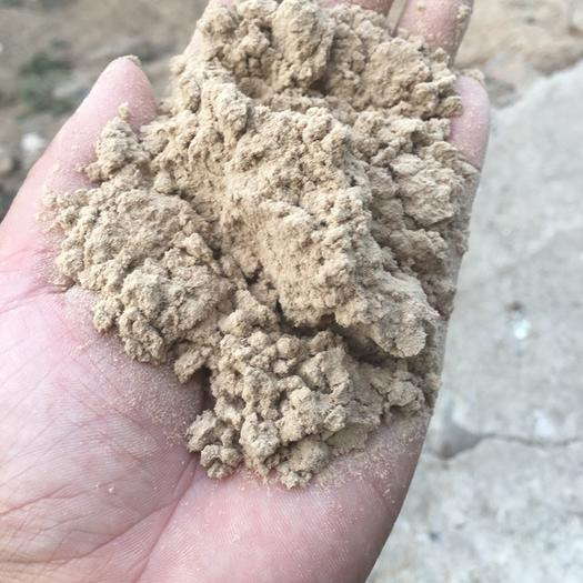 荆州监利县木粉 造蚊香和造纸用砂光粉80一180目