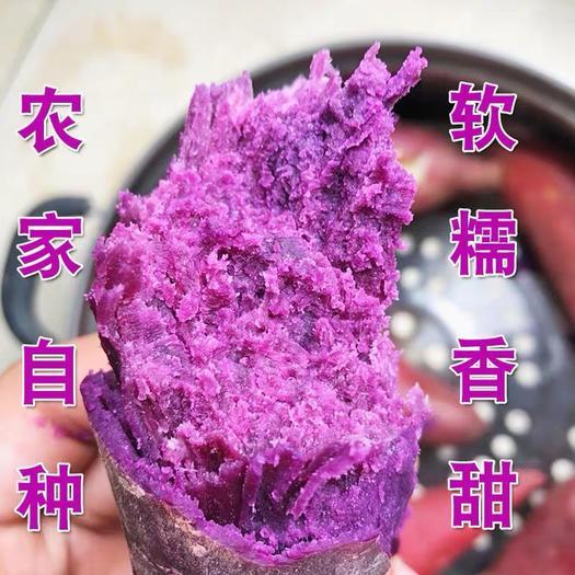 臨沂 紫薯5斤裝,一件代發?,壞果包賠,極速發貨
