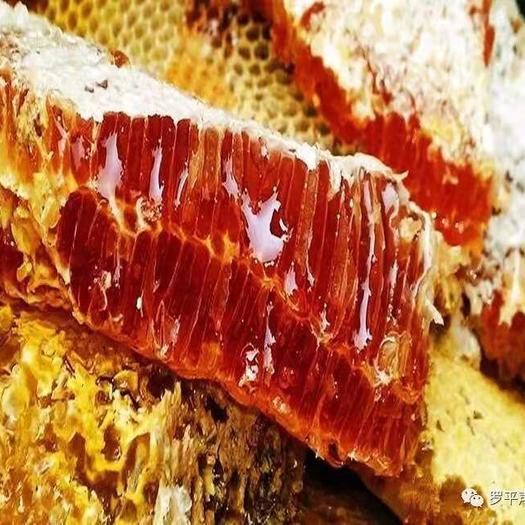 株洲醴陵市 中蜂土蜂蜜山花蜂蜜纯蜂蜜批发50斤/桶包物流