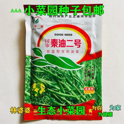 宿迁沭阳县紫油菜种子 秦油二号杂交油菜种子二号包邮