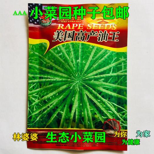 沭陽縣 美國高產油王油菜籽種子包郵