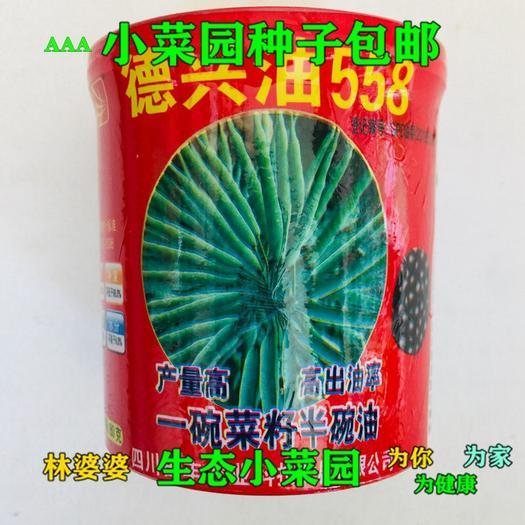 沭陽縣 德興油558油菜籽種子包郵
