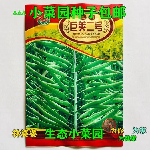 沭陽縣 巨莢二號油菜籽種子包郵