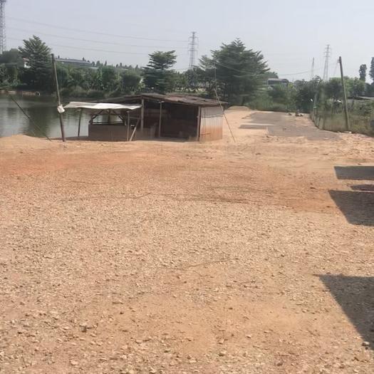 广东省佛山市三水区坑塘 无禁养鱼塘转承包 19亩