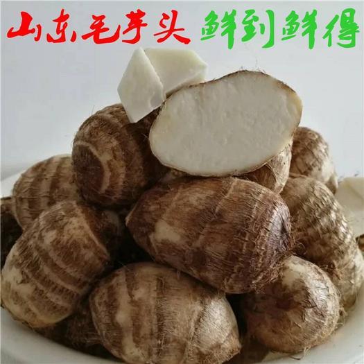 蒙陰縣 山東牛奶芋頭帶箱10斤當季毛芋蔬菜包郵