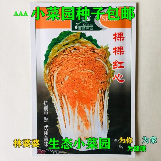 江苏省宿迁市沭阳县 棵棵红心杂交大白菜种子包邮