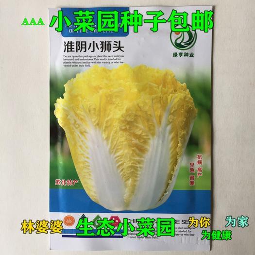江苏省宿迁市沭阳县贵族白菜种子 高产淮阴小狮头种子包邮