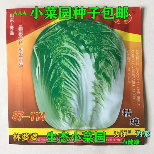 江苏省宿迁市沭阳县 87-114优质高产大白菜种子包邮