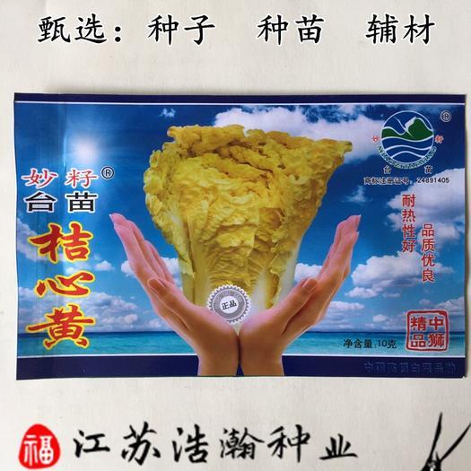 江苏省宿迁市沭阳县 桔心黄白菜种子包邮