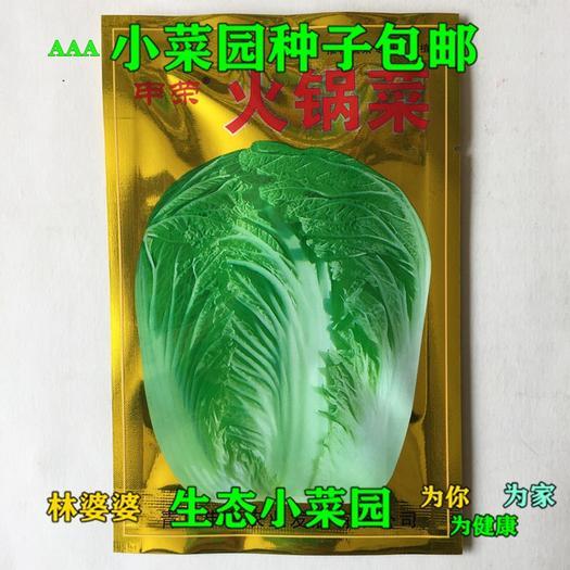 江苏省宿迁市沭阳县 申荣火锅菜白菜种子包邮
