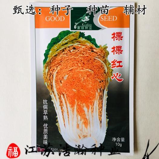 江苏省宿迁市沭阳县 棵棵红心白菜种子包邮