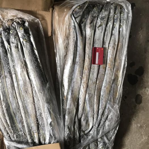 江西省吉安市吉州区西非带鱼 野生 1-1.5公斤