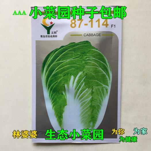 江苏省宿迁市沭阳县 87-114大白菜种子包邮