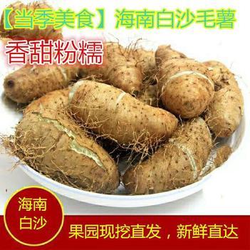 【现挖现在卖 】海南白沙毛薯农家自种大毛薯甜薯 特价包邮