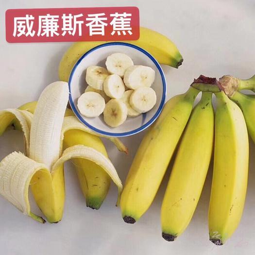 南宁西乡塘区 广西长香蕉非米蕉 包邮