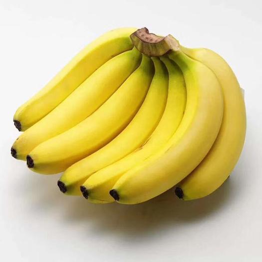 南宁西乡塘区 广西长香蕉 【包邮】一件代发