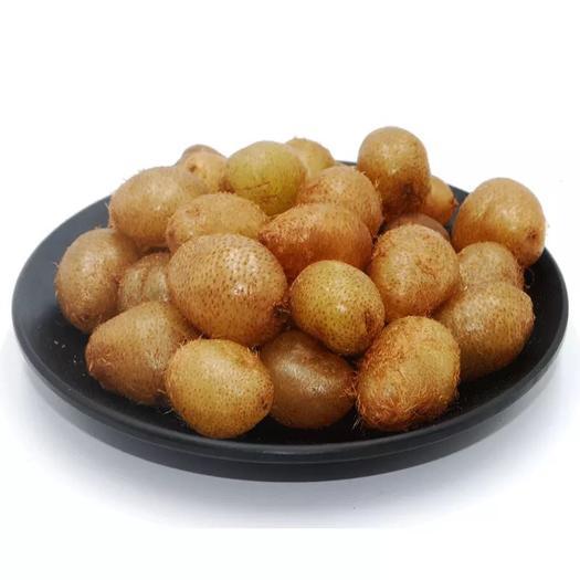广西壮族自治区来宾市象州县白玉豆 凤凰果(像缩小版土豆  但营养价值口感却高几万倍  全是野生