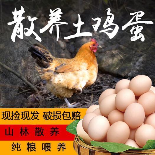 江苏省连云港市赣榆区土鸡蛋 食用 箱装