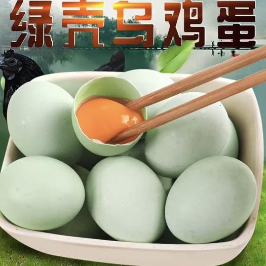 江苏省连云港市赣榆区 新鲜绿壳鸡蛋农家山林散养乌鸡蛋现捡现发