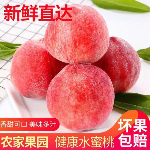 佛山南海区 (爆甜桃子)现摘新鲜青桃子水蜜桃脆甜多汁应季水果孕妇水果