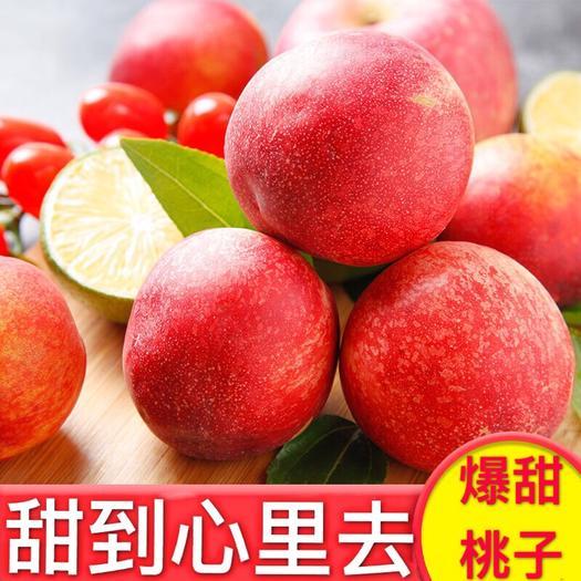 佛山南海区 【爆甜到心里去】现摘新鲜桃子水蜜桃脆甜多汁应季水果一件代发