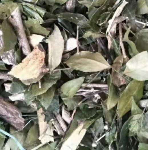 玉林玉州區 九里香  一斤起發貨