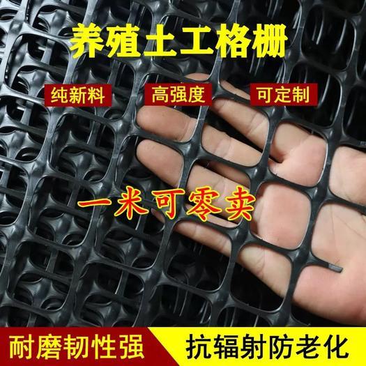 安平县护栏网/围网 塑料网土工隔栅网钢塑玻纤路面承载力双单向双面拉伸养鸡围栏阳台