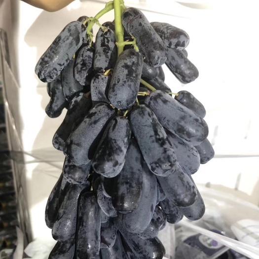 广州金手指葡萄 1.5- 2斤 5%以下 1次果