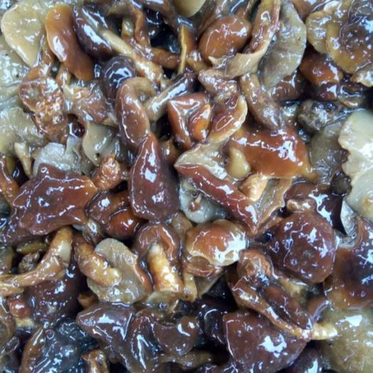 内蒙古自治区赤峰市宁城县蘑菇 滑子菇2020年出100万吨盐机和干货