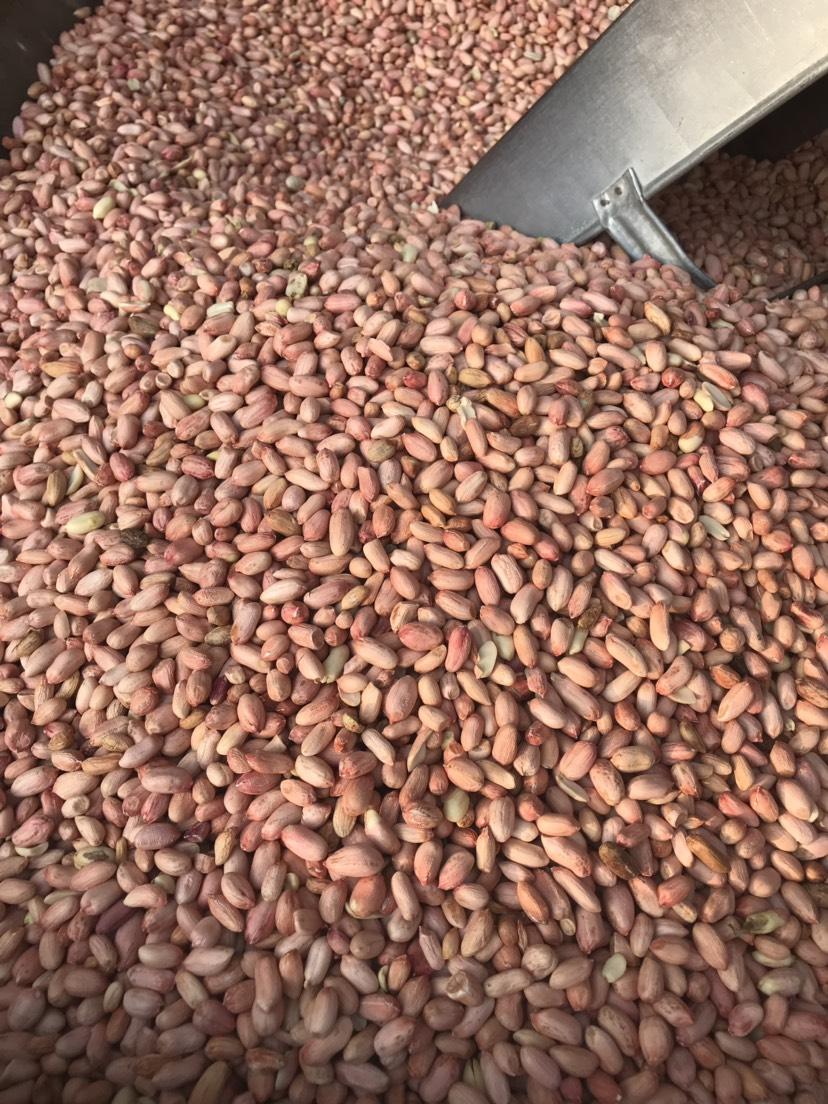 花生米 長期供貨合作