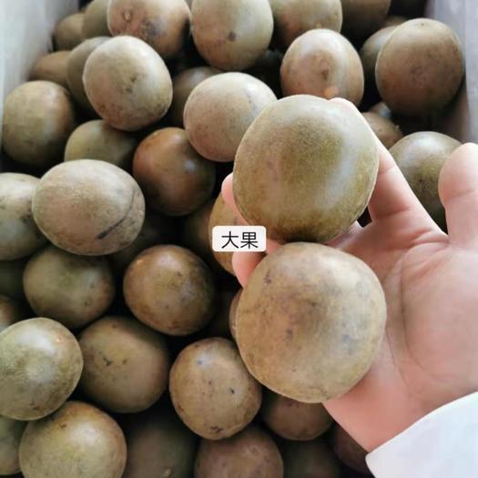 亳州谯城区 黄金罗汉果 干果罗汉果茶泡茶果芯花茶