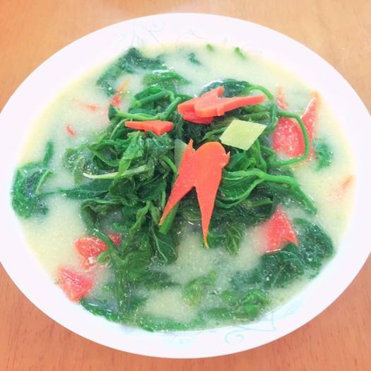 广东省广州市荔湾区 桑芽、桑芽菜