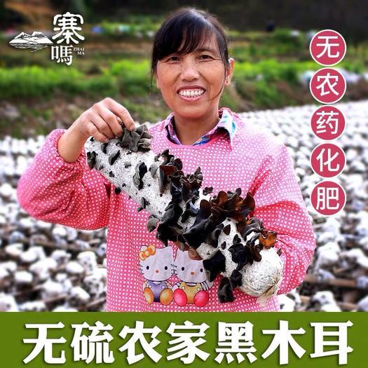 江西省抚州市崇仁县 农家自产小碗耳散装干木耳,黑木耳小秋无根毛木耳干货
