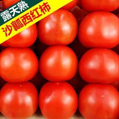 攀枝花 【特價包郵】新鮮西紅柿蔬菜大番茄沙瓤西紅柿無公害自然熟包郵