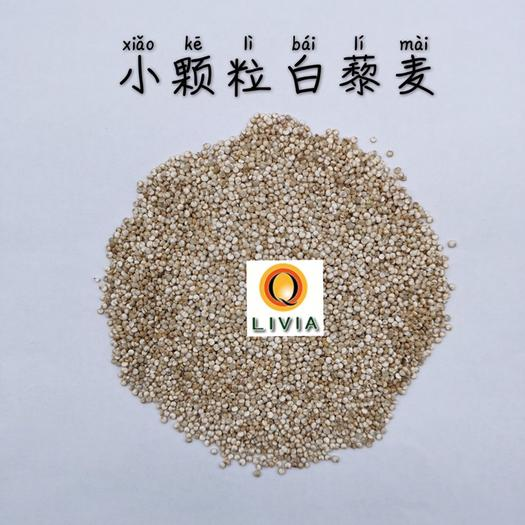 南京 高原白藜麥白藜麥米散裝、真空磚雜糧米,支持代工一件代發