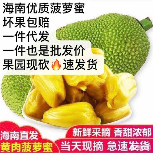 萬寧萬寧市海南菠蘿蜜 特大果園供貨、每日現砍、發貨快、售后長期供貨水果零售
