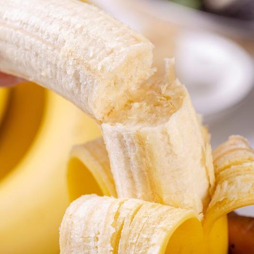 勐海县 【新鲜现砍】云南香蕉当季山地蕉批发自然熟孕妇新鲜水果