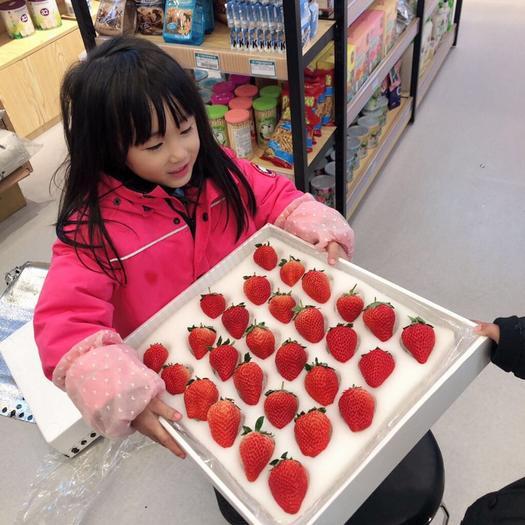 平度市 一件代發精品禮盒草莓
