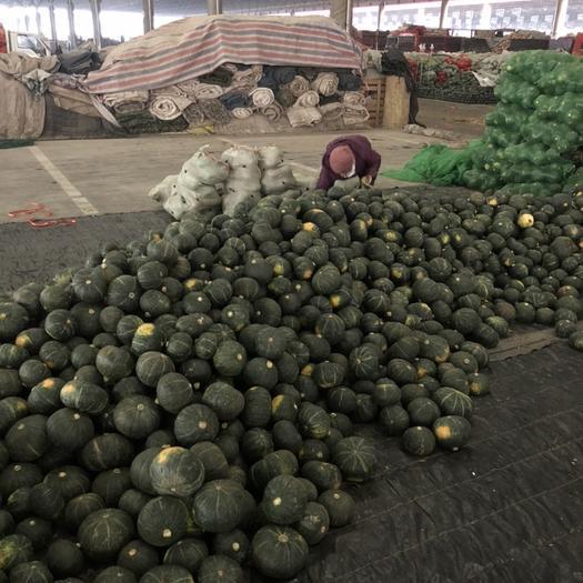 壽光市 支持一件代發五斤裝,大批量采購板栗南瓜
