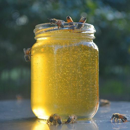 白山抚松县 长白山蜂蜜