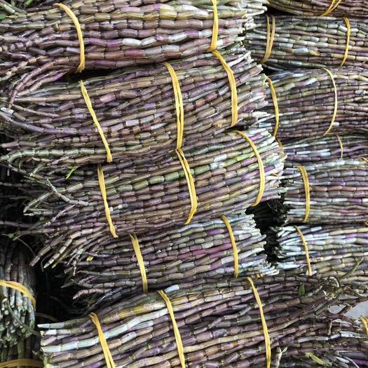 芒市 鐵皮石斛鮮條、基地直銷,大量批發