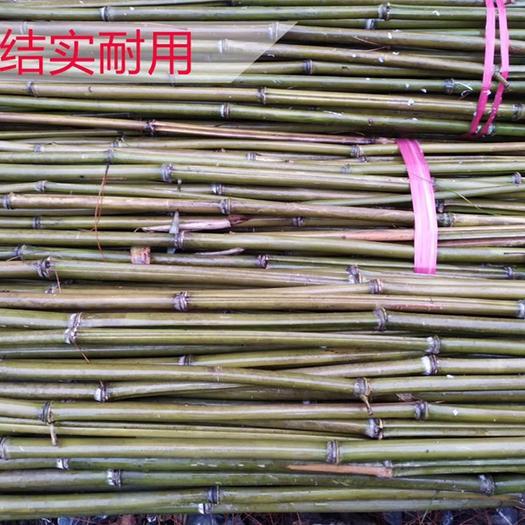 郴州桂陽縣 〖1.5米菜架竹〗瓜果竹架/蔬菜竹