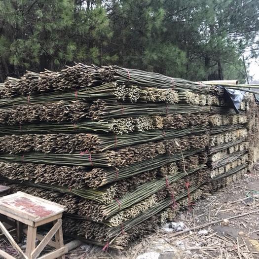 桂陽縣萊架竹 2.2米菜架竹【保質保量】蔬菜瓜果竹架