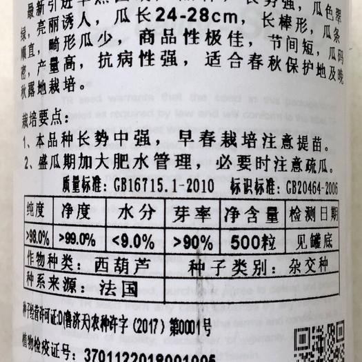 沭阳县 各种西葫芦种子新种子包邮大量现货供应