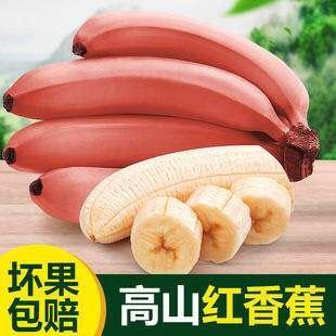 平和县 福建红皮香蕉香甜美味专供电商平台支持一件代发