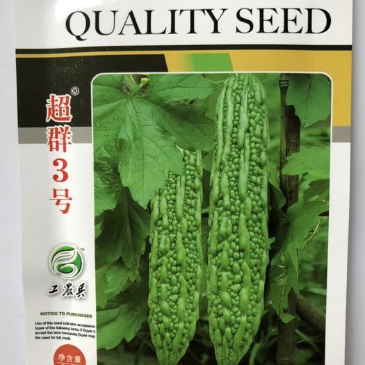 平遠縣 臺灣進口珍珠苦瓜種子 超群3號 早熟豐產 抗病耐熱