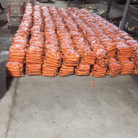 盐城东台市三红胡萝卜